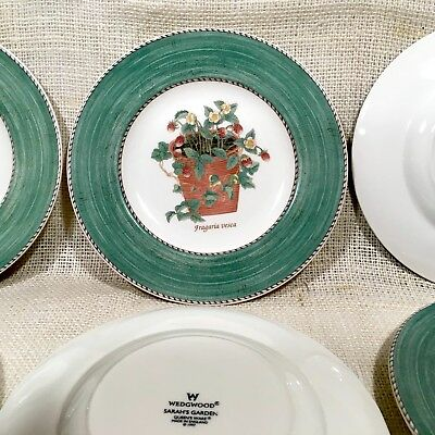 Wedgwood Sarah's Garden 1997 Queens Ware  8 1/4 Salad Plate Green 12 Available