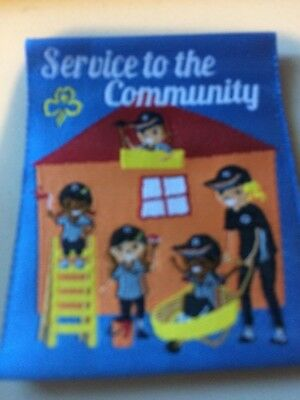 Girl Guides / Scouts Service to the community