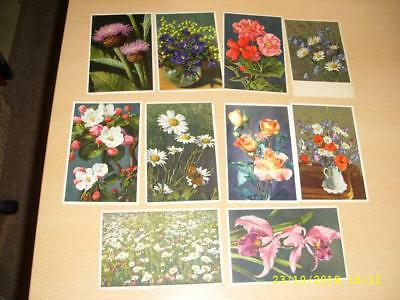 Beautiful Colourful Flowers  - Collection Of Vintage  Postcards
