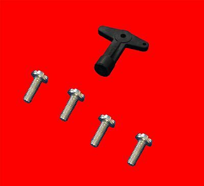 RENAULT Clio Megane Kangoo Scenic alloy wheel centre cap screws bolts with key