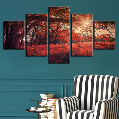 Red Tree Autumn Forest Sunrise Rays 5 Pcs Canvas Framed Print Wall Art Poster