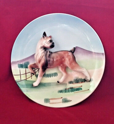 Tilso 3D Decorative Hanging Wall Plate Japan BOXER DOG  3-D