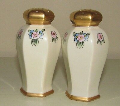 Vintage RS Germany Hand Painted Fine Porcelain Salt & Pepper Shakers