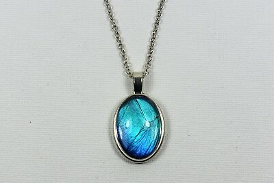 Blue Morpho Butterfly Wing Pendant Necklace Silver Finish Jewelry