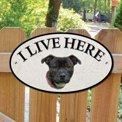 Staffordshire Bull Terrier Dog Gate Sign I Live Here Sign Staffy Dog Gate Plaque