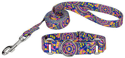 Country Brook Petz®  Martingale Dog Collar & Leash - Groovy Collection