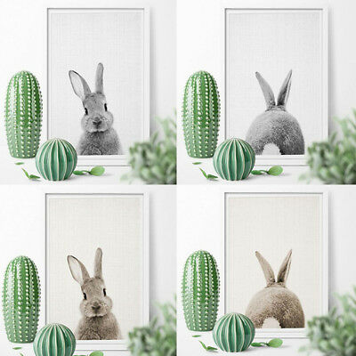 50x70cm Modern Oil Painting Bunny Rabbit Canvas Home Decoration For Living Room
