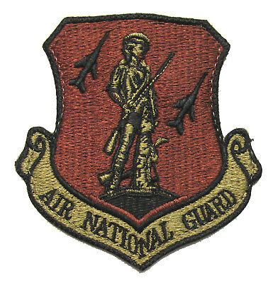 USAF Air National Guard OCP Patch - Air Force Spice Brown