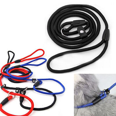 Strap Strong Nylon Rope Pet Dog Puppy Slip Training Leash Walking Lead Collar B1