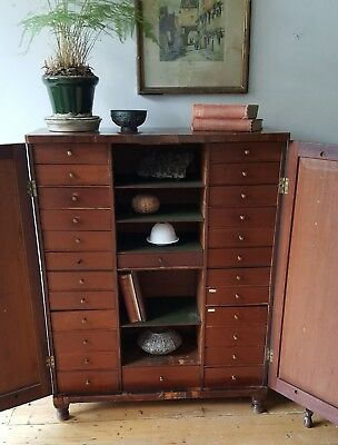 Late 19th Century Mahogany Collector's Chest Specimen Cabinet Drawers