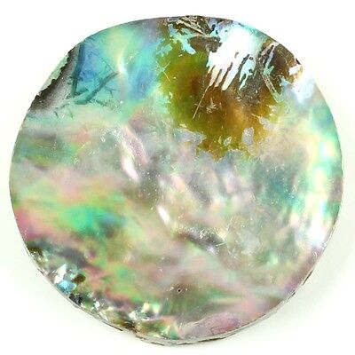 Round 25x25 mm Natural ABALONE SHELL Flat Gems 15.50 Cts For Necklace S-11552