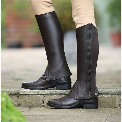 * Adult's Shires Brown Leather Cantley Half Chaps - CLEARANCE! *