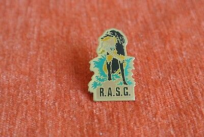 19866 Pin's Pins Chien Dog Chasse Rasg Reunion Amateurs Setter Gordon