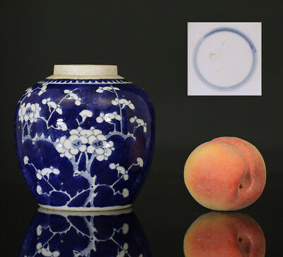 A BEAUTIFUL antique CHINESE PORCELAIN BLUE WHITE PRUNES JAR 19TH CENTURY