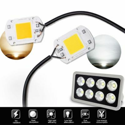 220v LED Floodlight 20/30/50W Cool/Warm White COB Chip Smart IC Driver Lamp frr