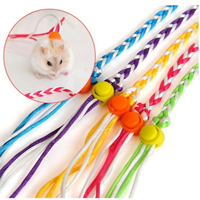 Rat Mouse Harness Rope Ferret Hamster Collar Leash Lead Glider Colorful Good