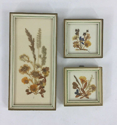 Vintage Framed Dried Pressed Flowers Set of 3 Picture Made In Germany