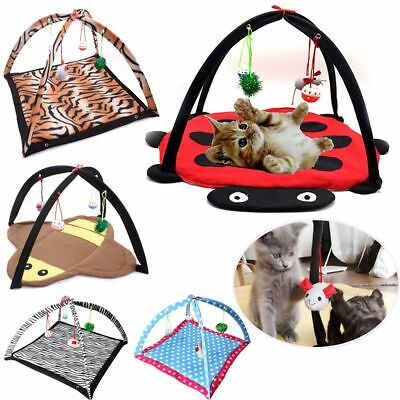 Mobile Funny Cat Foldable Bed Kitten Playing Toy Pet Tent Training Mat