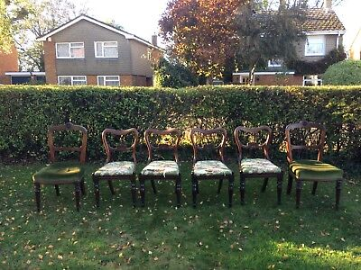 Set of 6 William IV Dining Chairs
