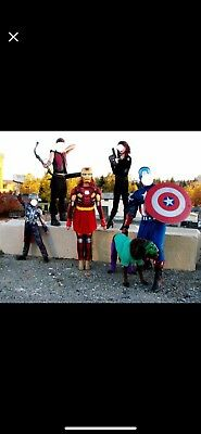 lot of 5 Avengers family costumes