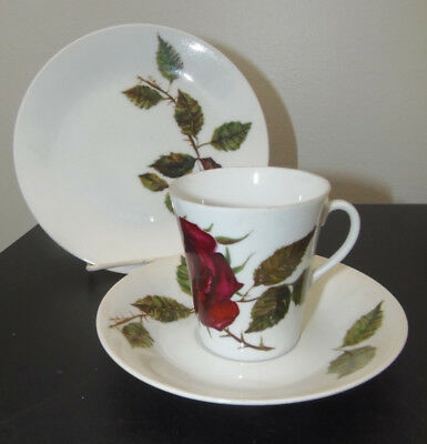 Arabia Finland Vintage Iso Ruusu (Large Rose) Pattern Coffee Set
