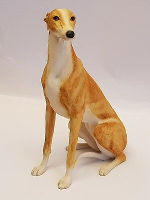 Border Fine Arts DG30 Greyhound figurine - tan and white #3