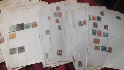 British  Commonwealth   Mint And Used    Hcv Stamps Collection