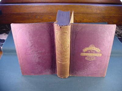 1873 The Undeveloped West or Five Years in the Territories J H Beadle Book