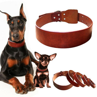 Heavy Duty Small Medium Large Dog Collar Plain Genuine Leather Collars for Dogs