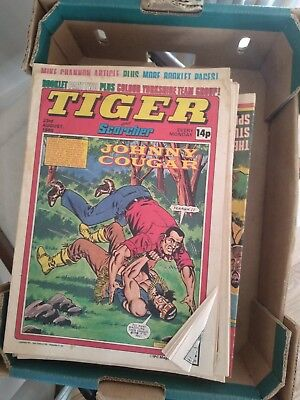 Tiger and Scorcher Comics