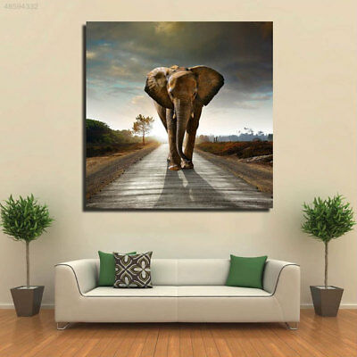 NEW Pictures Oil Painting Room DIY Decoration Canvas Office Gift Home