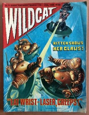 WILDCAT comic issue No.11 from 1989- UK fantasy comic with superior artwork