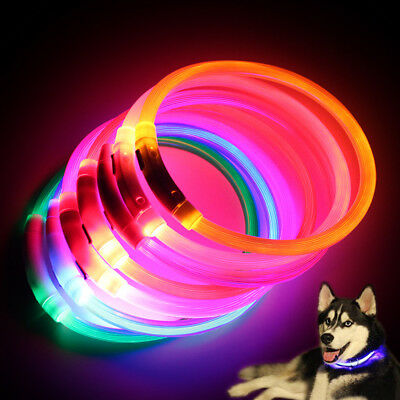 Rechargeable LED Night Luminous USB Charging Pet Dog Puppy Neck Collar Amid