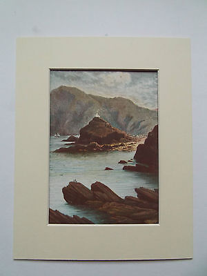 ILFRACOMBE DEVON  OLD ANTIQUE PRINT  DATED 1880 IN 10X8in MOUNT READY TO FRAME