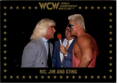1991 WCW Championship Marketing complete set lot 110 cards Sting Ric Flair more