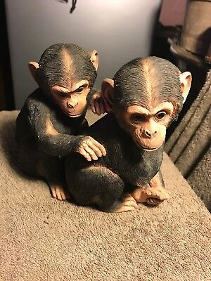 Chimp Pair, Young And Cheeky, Country Artist