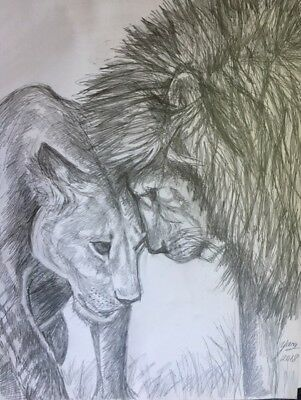Lions, Male and Female, Big Cats,  drawing painting pencil on aquarelle 11 by 14