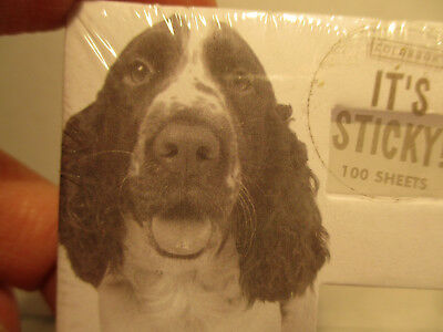 English Springer Spaniel Mini Sticky Note Pads