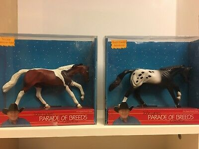 Parade of Breeds Collection - American Paint and Appaloosa - Peter Stone