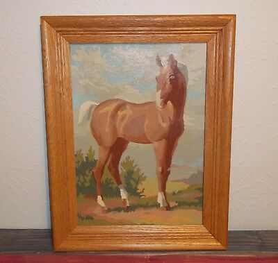 Vintage Paint by Number in Wood Frame, Horse with Sky, Signed & Dated, Excellent