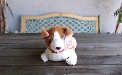 Kippy The Dog Beanie Baby Of The Month Vintage Ty Bean Bag Plush Brown White