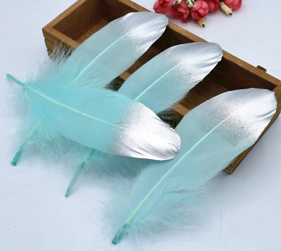 5pcs 15-20cm Mint Green Silver Dip Hand Painted Goose Feathers DIY Craft Cake