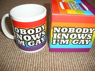 Nobody Knows I'm Gay Mug Rainbow Design Tea Coffee Cup Kitchenware