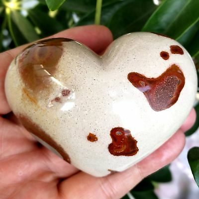 261g Natural Energy Stone Sea Stone Ancient Rock Specimen Heart-shaped 806