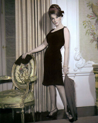 """ANN MARGRET MADE IN PARIS 1966 HOLLYWOOD ACTRESS 8x10"""" HAND COLOR TINTED PHOTO"""