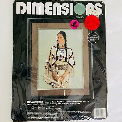Dimensions Crewel Kit 1424 SIOUX MAIDEN Embroidery Needlepoint 1993 David Wright