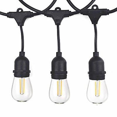 Vintage Outdoor String Lights Kit, 2W S14 LED Filament Bulbs Included, 48Ft Long