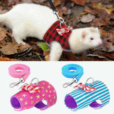 Fabric Harness & Leash Set for Small Animals Guinea Pig Ferret Hamster Squirrel
