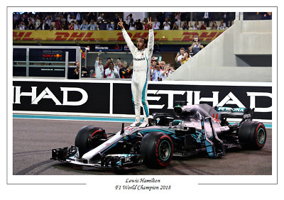 Lewis Hamilton 2018 F1 Formula One World Champion Poster Print