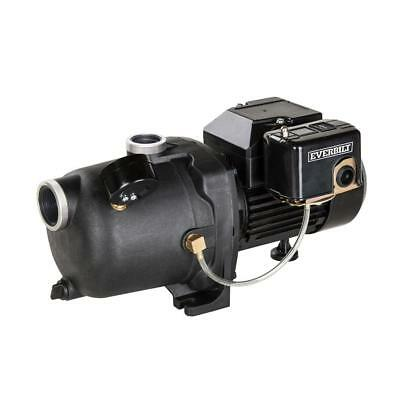Everbilt 3/4 HP Shallow Well Jet Pump